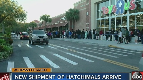 Toys R Us shelves cleared quickly of Hatchimals 1
