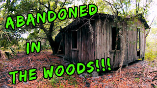Abandoned Homestead Found in the Woods!!!