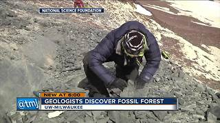 UW-Milwaukee geologists discover Antarctic fossil forest - Video