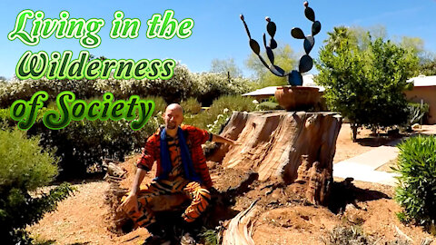Living in the Wilderness of Society - Be Healthy & Honorable!