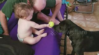 This is what friendship looks like between a dog and a baby
