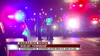 Pedestrian hit in Shelby Twp. - Video