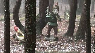 Hail Falls Amid Garden Gnomes in Upstate New York