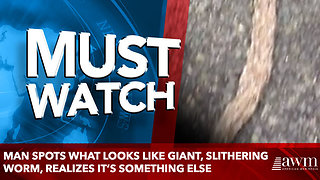 Man Spots What Looks Like Giant, Slithering Worm, Realizes It's something else - Video