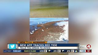 New App Tracks Red Tide - Video