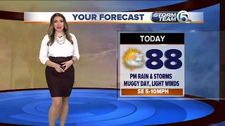 Friday forecast - Video