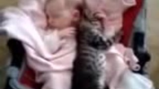 Baby and kitten enjoy precious nap time together