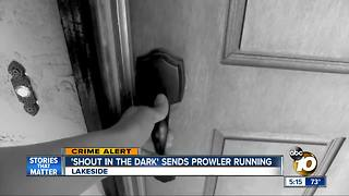 Shout in the dark sends prowler running - Video