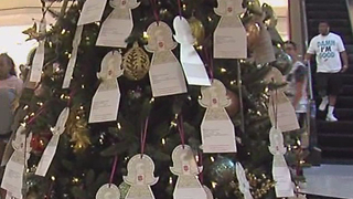 Angel Tree up at Gardens Mall - Video