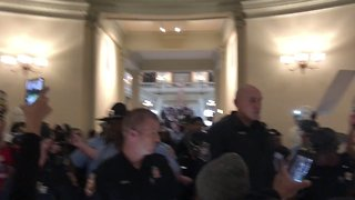 Pro-Recount Protesters Chant in Georgia Capitol after Arrests