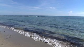 Bathtub Beach closed to swimmers after algae spotted; no other beaches impacted