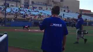 Baseball Game Features Intelligent Bat-Fetching Dog - Video
