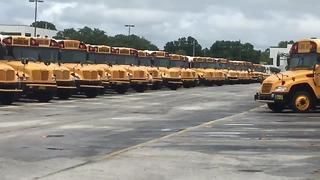 Pinellas County hiring school bus drivers | Digital Short - Video