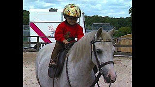 Two-Year-Old Show Jumper - Video