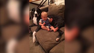 Baby's Favorite Couch Potato - Video