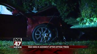 UPDATE: Driver dies after crashing into trees
