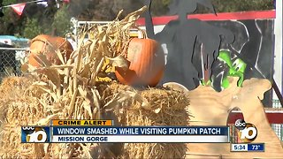 Window smashed while family visits pumpkin patch