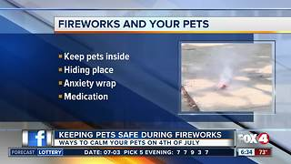 How to calm your pets during fireworks - Video
