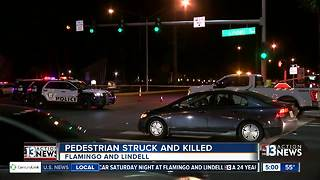 Pedestrian killed near Flamingo and Lindell - Video