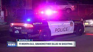 17 month-old, grandmother killed in Fruit Belt shooting - Video