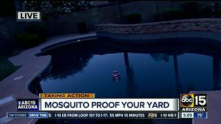 Mosquitoes more active as weather heats up, experts say - Video
