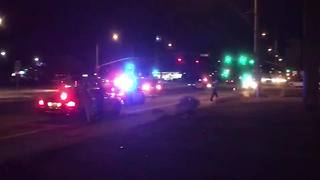 SCENE VIDEO: Pedestrian struck at Park and Benson Highway - Video