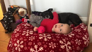 Puppy love between baby and his dog is super sweet