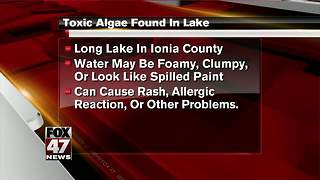 Toxic algae found in lake in Ionia County - Video