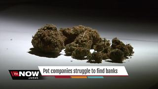 Local medical marijuana companies struggling to find banks - Video