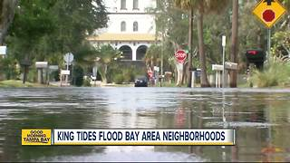 King Tide floods Tampa Bay coast - Video