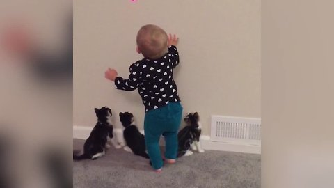 Kids and Kitties