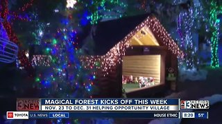Magical Forest kicks off this week