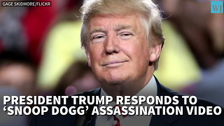 Trump Responds To Snoop Dogg's Assassination Video - Video