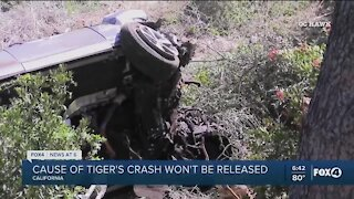 Cause of Tiger Woods crash determined but not released