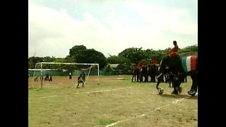 Kids v Elephants Soccer Match - Video
