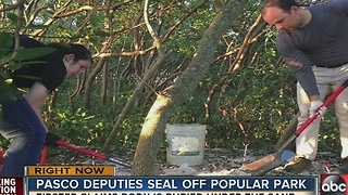 New Port Richey Police searching for body at Green Key Beach Park - Video