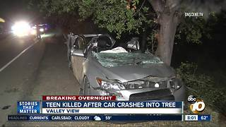 Teen killed after car crashes into tree in Valley Center - Video