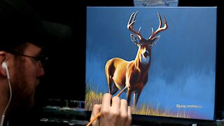 Acrylic Wildlife Painting of a Deer (Buck) - Time Lapse - Artist Timothy Stanford