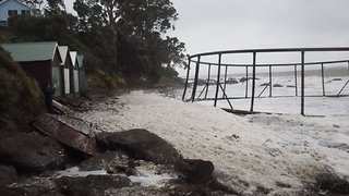 Cold Snap Weather Washes Fish Farm Ashore at Hinsby Beach - Video