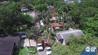 Massive tree falls on home after July 4 storms - Video
