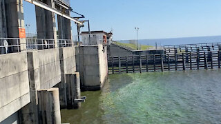 Health advisory issued for Port Mayaca Lock after blue-green algae detected