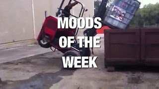 The Most Relatable Moods for Each Day of the Week - Video