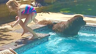 Overhyped Newfoundland scares girls out of the pool