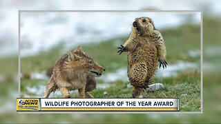 Check out the photo that won Wildlife Photographer of the Year Award