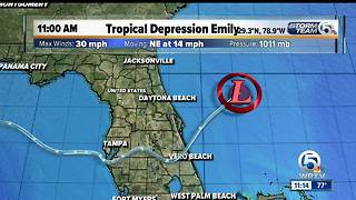 11 a.m. Tuesday Tropical Depression Emily - Video