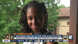 13-year-old girl died protecting sister when tree fell on car - Video