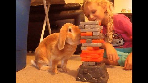 Bunny rabbit plays Jenga with little girl
