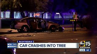 Man dead after crashing car into tree in Scottsdale