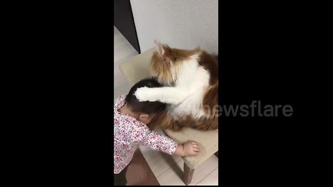 Too cute! Baby stokes cat and cat licks baby