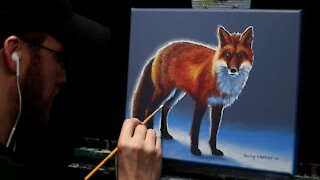 Acrylic Wildlife Painting of a Red Fox in Snow - Time-lapse - Artist Timothy Stanford